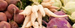 Nordiske grøntsager